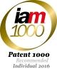 IAM Patent 1000 (2016)